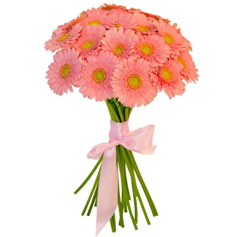 какие цветы можно дарить девушке