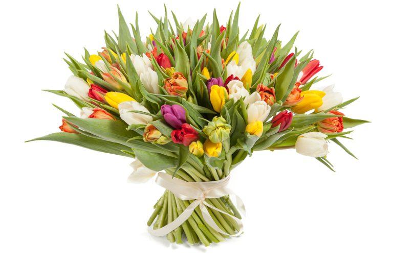 какие цветы подарить девушке в знак любви