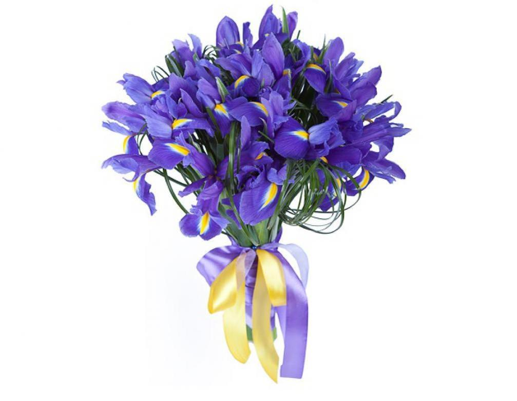 цветы которые дарят