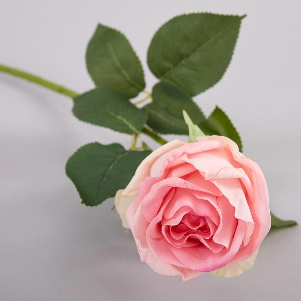 какого цвета дарить цветы девушке